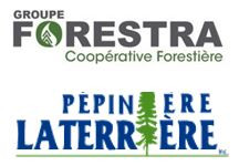 Groupe Forestra Coopérative Forestière