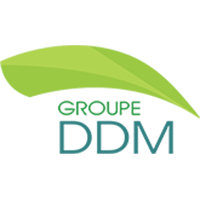Groupe DDM